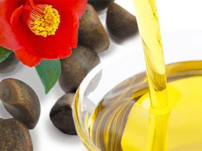 五島のヤブツバキの椿油